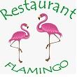 Logo Flamingo Vio